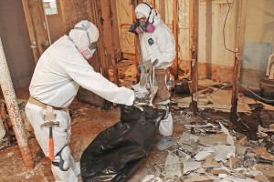 mold inspection | Downers Grove, IL | Everdry Waterproofing Illinois